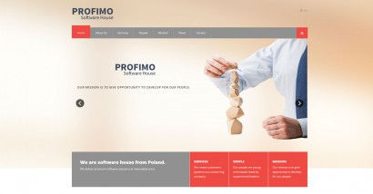 Profimo Software House